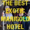The Best Exotic Marigold Hotel - Pass