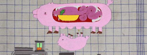 Frau Schwein geht in die Scheissedisko