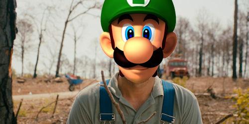 Prince Luigi